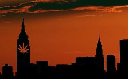 newyork-marihuana